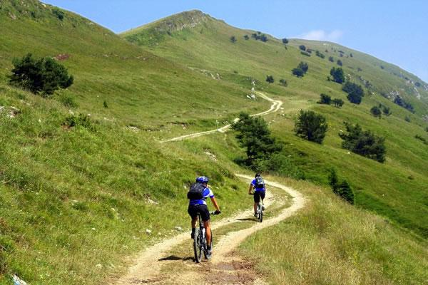 Offerta-speciale-Amici-in-Mountain---Bike